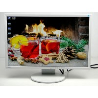 "Монитор 24"" EIZO EV2416W TN+film Widescreen Wite"